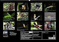 Borneo - Tierparadies Regenwald (Wandkalender 2019 DIN A2 quer) - Produktdetailbild 10
