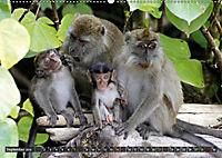 Borneo - Tierparadies Regenwald (Wandkalender 2019 DIN A2 quer) - Produktdetailbild 9