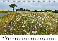 Bornholm 2019 Ein Jahr im Sommer (Tischkalender 2019 DIN A5 quer) - Produktdetailbild 4