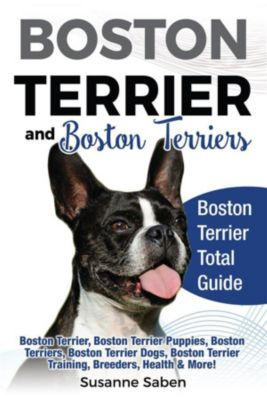 Boston Terrier and Boston Terriers, Susanne Saben
