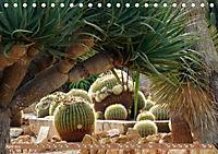 BOTANICACTUS Mallorcas Kakteengarten (Tischkalender 2019 DIN A5 quer) - Produktdetailbild 4