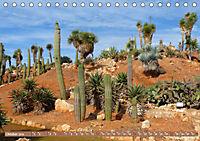 BOTANICACTUS Mallorcas Kakteengarten (Tischkalender 2019 DIN A5 quer) - Produktdetailbild 10