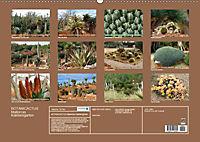 BOTANICACTUS Mallorcas Kakteengarten (Wandkalender 2019 DIN A2 quer) - Produktdetailbild 13