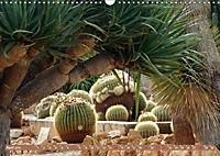 BOTANICACTUS Mallorcas Kakteengarten (Wandkalender 2019 DIN A3 quer) - Produktdetailbild 4
