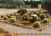 BOTANICACTUS Mallorcas Kakteengarten (Wandkalender 2019 DIN A3 quer) - Produktdetailbild 7