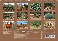 BOTANICACTUS Mallorcas Kakteengarten (Wandkalender 2019 DIN A3 quer) - Produktdetailbild 13