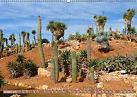 BOTANICACTUS Mallorcas Kakteengarten (Wandkalender 2019 DIN A2 quer) - Produktdetailbild 10
