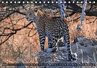 Botswana - Landschaft und Tierwelt (Tischkalender 2019 DIN A5 quer) - Produktdetailbild 7