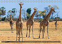 Botswana - Landschaft und Tierwelt (Tischkalender 2019 DIN A5 quer) - Produktdetailbild 1