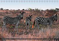 Botswana - Landschaft und Tierwelt (Tischkalender 2019 DIN A5 quer) - Produktdetailbild 12