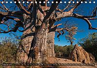 Botswana - Landschaft und Tierwelt (Tischkalender 2019 DIN A5 quer) - Produktdetailbild 2