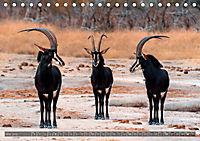 Botswana - Landschaft und Tierwelt (Tischkalender 2019 DIN A5 quer) - Produktdetailbild 5