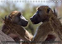 Botswana - Landschaft und Tierwelt (Tischkalender 2019 DIN A5 quer) - Produktdetailbild 3