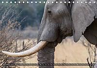 Botswana - Landschaft und Tierwelt (Tischkalender 2019 DIN A5 quer) - Produktdetailbild 11