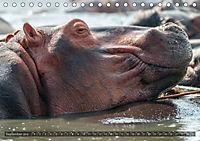 Botswana - Landschaft und Tierwelt (Tischkalender 2019 DIN A5 quer) - Produktdetailbild 9