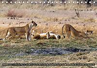 Botswana - Landschaft und Tierwelt (Tischkalender 2019 DIN A5 quer) - Produktdetailbild 10