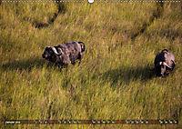 Botswana von oben (Wandkalender 2019 DIN A2 quer) - Produktdetailbild 6