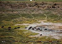 Botswana von oben (Wandkalender 2019 DIN A2 quer) - Produktdetailbild 5