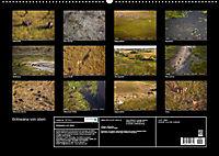 Botswana von oben (Wandkalender 2019 DIN A2 quer) - Produktdetailbild 13