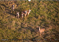 Botswana von oben (Wandkalender 2019 DIN A3 quer) - Produktdetailbild 13