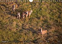 Botswana von oben (Wandkalender 2019 DIN A4 quer) - Produktdetailbild 1