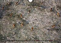 Botswana von oben (Wandkalender 2019 DIN A4 quer) - Produktdetailbild 2
