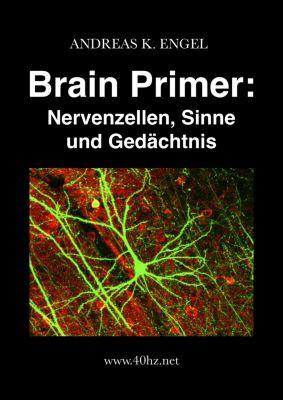 Brain Primer: Nervenzellen, Sinne und Gedächtnis, Andreas K. Engel