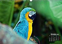 Brasilien. Der Iguazú-Nationalpark (Wandkalender 2019 DIN A3 quer) - Produktdetailbild 2