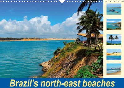Brazil's north-east beaches (Wall Calendar 2019 DIN A3 Landscape), Martiniano Ferraz