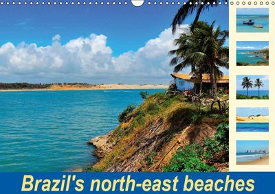 Brazil's north-east beaches (Wall Calendar 2019 DIN A3 Landscape), Martiniano Ferraz