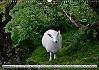 Brecon Beacons - Magisches Südwales (Wandkalender 2019 DIN A3 quer) - Produktdetailbild 11