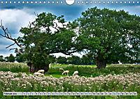 Brecon Beacons - Magisches Südwales (Wandkalender 2019 DIN A4 quer) - Produktdetailbild 2