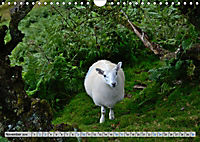 Brecon Beacons - Magisches Südwales (Wandkalender 2019 DIN A4 quer) - Produktdetailbild 11