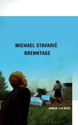 Brenntage, Michael Stavaric