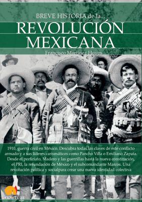 Breve historia de la Revolución mexicana, Francisco Martínez Hoyos
