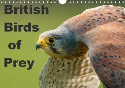 British Birds of Prey (Wall Calendar 2019 DIN A4 Landscape), Dalyn