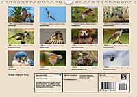 British Birds of Prey (Wall Calendar 2019 DIN A4 Landscape) - Produktdetailbild 13