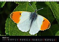 British Butterflies 2019 (Wall Calendar 2019 DIN A4 Landscape) - Produktdetailbild 3