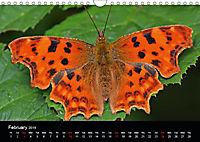 British Butterflies 2019 (Wall Calendar 2019 DIN A4 Landscape) - Produktdetailbild 2