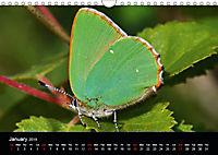 British Butterflies 2019 (Wall Calendar 2019 DIN A4 Landscape) - Produktdetailbild 1