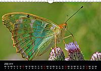 British Butterflies 2019 (Wall Calendar 2019 DIN A4 Landscape) - Produktdetailbild 7