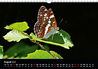 British Butterflies 2019 (Wall Calendar 2019 DIN A4 Landscape) - Produktdetailbild 8