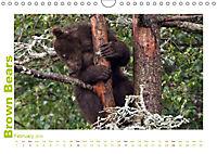 Brown Bears 2019 UK-Version (Wall Calendar 2019 DIN A4 Landscape) - Produktdetailbild 2