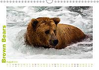 Brown Bears 2019 UK-Version (Wall Calendar 2019 DIN A4 Landscape) - Produktdetailbild 8