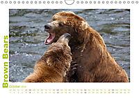 Brown Bears 2019 UK-Version (Wall Calendar 2019 DIN A4 Landscape) - Produktdetailbild 10