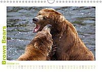 Brown Bears 2019 UK-Version (Wall Calendar 2019 DIN A4 Landscape) - Produktdetailbild 10