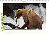 Brown Bears 2019 UK-Version (Wall Calendar 2019 DIN A4 Landscape) - Produktdetailbild 3
