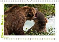 Brown Bears 2019 UK-Version (Wall Calendar 2019 DIN A4 Landscape) - Produktdetailbild 6