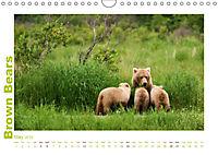 Brown Bears 2019 UK-Version (Wall Calendar 2019 DIN A4 Landscape) - Produktdetailbild 5