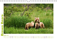 Brown Bears 2019 UK-Version (Wall Calendar 2019 DIN A4 Landscape) - Produktdetailbild 5